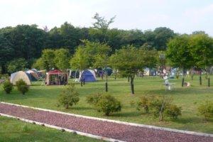 鹿公園キャンプ場 第2サイト
