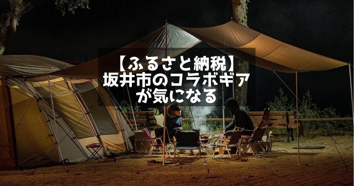 ふるさと納税 坂井市