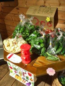 赤井川キャンプ場 野菜