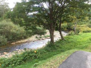 赤井川 キャンプ場 川