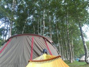 赤井川キャンプ場 テント